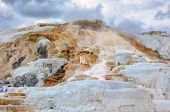 picture of mammoth  - Yellowstone - JPG