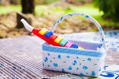 image of child development  - Plastic toy music pipe in basket prepared for kids over blur nature background  - JPG