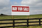 Sign  Hay For Sale