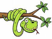 pic of anaconda  - Vector Illustration of Cartoon Snake on branch - JPG