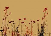Постер, плакат: цветочный стиль текстур