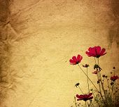 old flower paper texture background