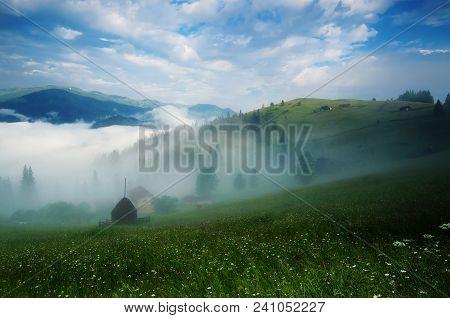 Foggy Morning Summer Mountain Landscape