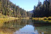 picture of upstream  - Truckee river Nevada usa viewed upstream back towards lake Tahoe - JPG