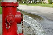 picture of gush  - Open fire hydrant open and gushing water - JPG