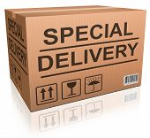 Постер, плакат: доставки специальной картонной коробки Экспресс доставка заказа от Интернет Интернет магазин Интернет магазин значок