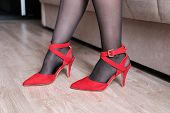 High Heels, Woman In Red High-heeled Shoes Standing Near The Sofa. Girl In Black Stockings, Female C poster