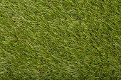 Carpet Covering Background. Pattern And Texture Of Green Grass Carpet. Copy Space poster