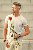 Valentines Day And Anniversary. Flowers Delivery. Dating Services. How To Be Romantic. Romantic Gent poster