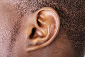 stock photo of deaf  - Black male ear close up - JPG