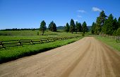 picture of dirt road  - spring - JPG