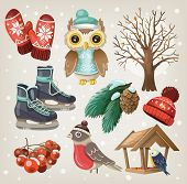 stock photo of snow owl  - Set of useful winter items and elements - JPG
