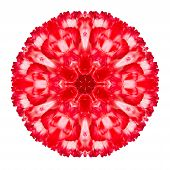 image of kaleidoscope  - Red Carnation Mandala Flower Kaleidoscopic Isolated on White Background - JPG
