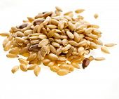 picture of flax seed oil  - Flax seeds - JPG