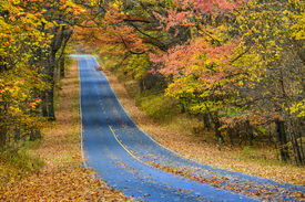 pic of twisty  - Winding asphalt road with autumn foliage  - JPG