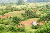 picture of tobacco barn  - Aerial view of the Vinales Valley in Cuba - JPG