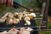 picture of brazier  - Chicken and mushrooms shashlik being grilled with brazier - JPG