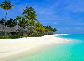 picture of kuramathi  - Beach bungalows on a tropical island - JPG