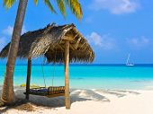 image of kuramathi  - Swing on a tropical beach  - JPG