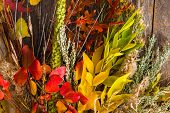 stock photo of fall decorations  - Colorful Fall Bouquet - JPG