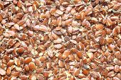 stock photo of flax plant  - Top view of broken flax seeds  - JPG