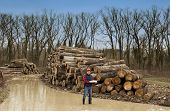picture of lumber  - Young smiling lumber engineer standing with notebook beside cut trunks in forest and looking at camera - JPG