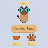 stock photo of mink  - Infographic show detail of chocolate mink cat eye color nose color and foot color - JPG