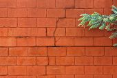 foto of cinder block  - Cracked painted cinder block wall with a tree branch on the right side of the frame - JPG
