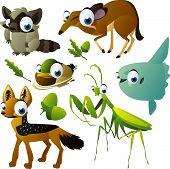 vector raccoon, napu, mola-mola, duck, mantis and jackal poster
