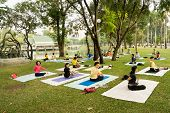 Group Yoga Practice In Park