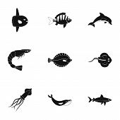 Water Wildlife Icons Set. Simple Set Of 9 Water Wildlife Vector Icons For Web Isolated On White Back poster