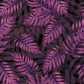 Palm Monstera Seamless Pattern. Magenta Tropical Summer Background. Beach Jungle Leaves For Swimwear poster