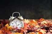 Alarm Clock In Colorful Autumn Leaves Against A Dark Background With Shallow Depth Of Field. Dayligh poster
