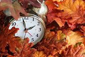 Vintage Alarm Clock Buried Underneath Colorful Fallen Autumn Leaves With Shallow Depth Of Field. Day poster