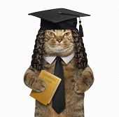 The Cat Professor In A Square Academic Hat Is Holding A Book  Criminal Law . White Background. poster