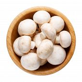 Whole Small Fresh White Champignon Mushrooms In Wooden Bowl Isolated On White. Top View. poster
