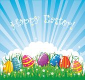 Colour easter vector banner. eggs in grass