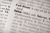 Dictionary Series - Philosophy: False