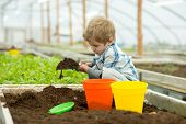 Small Kid. Small Kid Work In Greenhouse. Small Kid Gardener Play With Soil. Small Kid Needs Help Of  poster