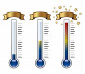 Vector Goal Thermometers At Different Levels Isolated On White Background poster