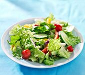 picture of blue-bell  - garden salad with fresh vegetables on blue table cloth - JPG