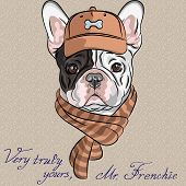 stock photo of headdress  - hipster dog French Bulldog breed in a brown cap and scarf - JPG