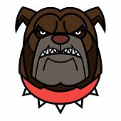 stock photo of spike  - Angry Bulldog is in red spiked collar - JPG