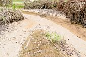 stock photo of ravines  - Fine silt eroding along small creek in ravine landscape - JPG