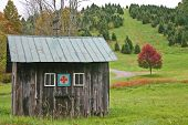 foto of shacks  - a small shack with a green roof with a red tree in the background - JPG