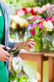 stock photo of tong  - Young handsome florist cutting rose with tongs in shop - JPG