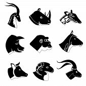 picture of rhino  - Animal heads silhouette icons in black including a buck  rhino  giraffe  pig  gorilla  horse  cow  sheep and goat  vector design elements - JPG