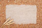 stock photo of fall-wheat  - Wheat ears on sacking - JPG