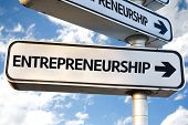image of entrepreneurship  - Entrepreneurship direction sign on sky background - JPG