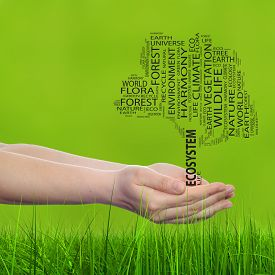 stock photo of ecology  - Concept conceptual black text word cloud tree man or woman hand - JPG